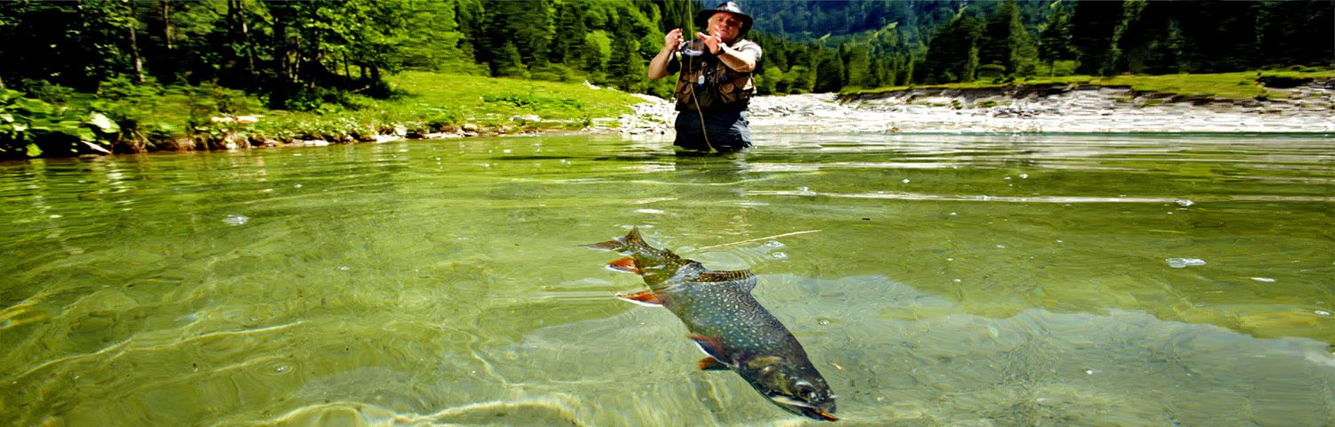 fly fishing in salzburger land